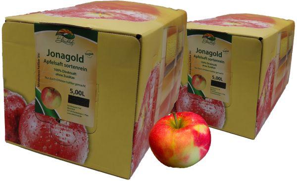 Bleichhof Apfelsaft Jonagold – 100% Direktsaft, OHNE Zuckerzusatz, Bag-in-Box mit Zapfsystem (2x 5l Saftbox)