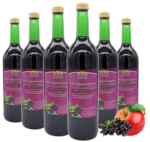 Bleichhof Apfel-Johannisbeer Saft – 100% Direktsaft, vegan, OHNE Zuckerzusatz, 6er Pack (6x 0,72l)