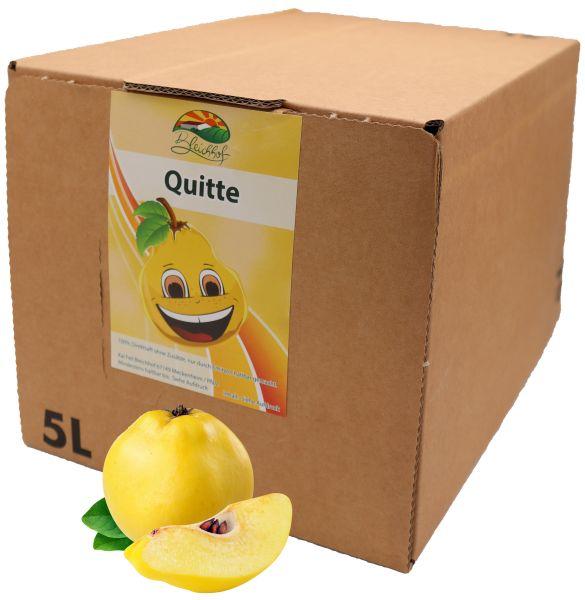 Bleichhof Quittensaft – 100% Direktsaft ohne Zusätze, Bag-in-Box Verpackung mit Zapfsystem (1x 5l Saftbox)