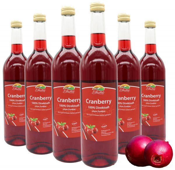 Bleichhof Cranberry-Saft (100% vegan) – zuckerfrei & rein im Geschmack » komplett frei von Zusätzen« Cranberry-Direktsaft ohne Zucker– Premium - Qualität vom Familienbetrieb (6x0,72L)