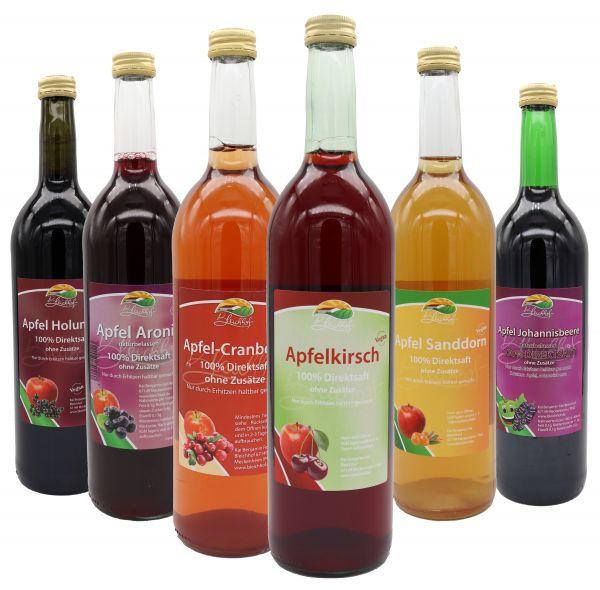 Bleichhof Apfelmischsäfte mit Beeren Probepaket-Apfel-Sanddornsaft,Apfel-Aroniasaft,Apfel-Cranberrysaft,Apfel-Johannisbeersaft,Apfel-Holundersaft,Apfel-Kirschsaft(6x0,72L)