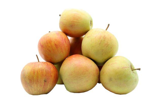 Bleichhof Äpfel Rubinette – saftig, fein-säuerliches Cox Orange Aroma, aus der Pfalz (5kg) Neue Ernte