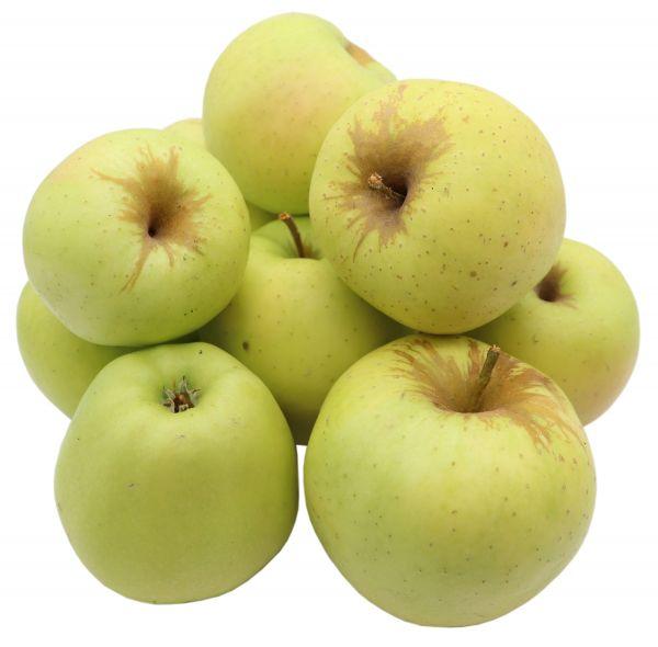 Bleichhof Äpfel Golden Delicious - süßaromatische Sorte aus der Pfalz (5kg) Neue Ernte 2020