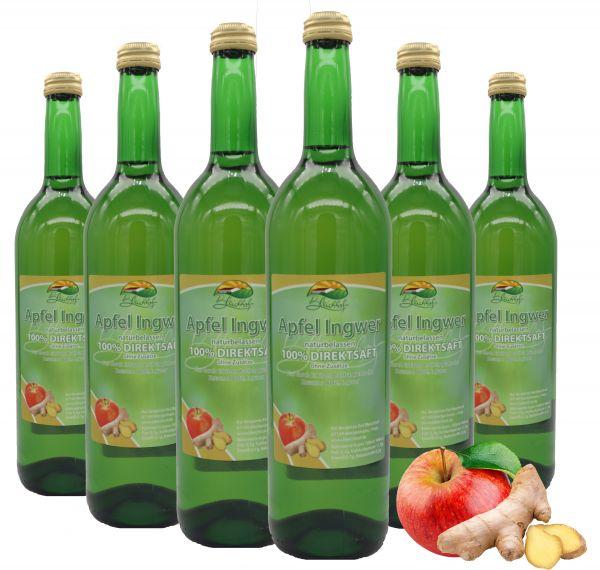 Bleichhof Apfelsaft mit Ingwersaft Direktsaft – 100% Direktsaft, vegan, OHNE Zuckerzusatz, 6er Pack (6x 0,72l)