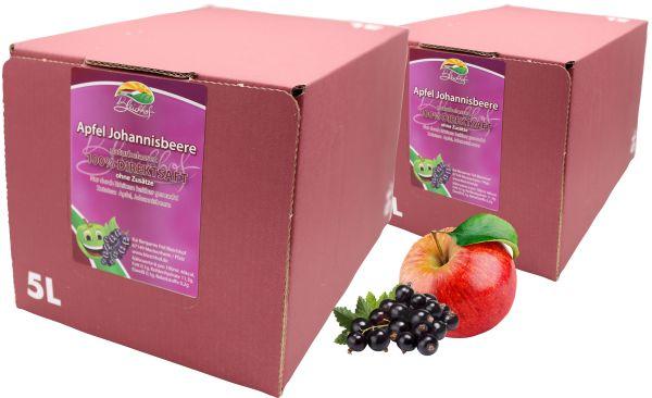 Bleichhof Apfel-Johannisbeer Direktsaft — 100% Direktsaft, vegan, Bag-in-Box mit Zapfsystem (2x 5l Saftbox)